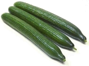 English Cucumbers 3 Pack